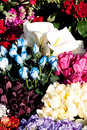 Flowers In Florist Royalty Free Stock Image - 17818706
