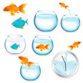 Fish And Aquariums. Vector Stock Images - 17888614