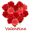 Valentine Red Roses Royalty Free Stock Photo - 17928555