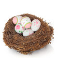 Easter Egg Nest Stock Image - 17947021