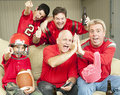 Football Fans Watch Superbowl Royalty Free Stock Images - 17948889