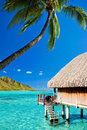 Bungallow And Palm With Steps To Amazing Lagoon Royalty Free Stock Image - 17950316