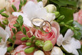 Two Wedding Rings On Pink Rose Flower Royalty Free Stock Image - 17957416