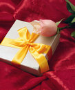 Roses And Gift Box Royalty Free Stock Photography - 17975067