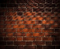Brick Wall Background With Grid Shadow Royalty Free Stock Photos - 18060798