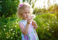 Little Girl With Dandelions. Royalty Free Stock Image - 18062706