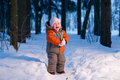 Baby Cry On Snow Road In Winter Forest Royalty Free Stock Photography - 18100707