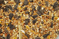 Wild Bird Food (seeds And Grain) Royalty Free Stock Photo - 18171155