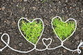 Two Green Heart Stock Photo - 18184980