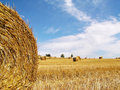 Harvested Rolls Of Straw Stock Images - 1820044