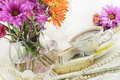 Ladies Tea Party Royalty Free Stock Images - 18264819