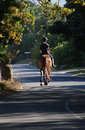 Country Lane Stock Images - 1836404