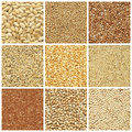 Dried Crop Collection Royalty Free Stock Images - 18310999