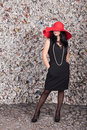 Beautiful Lady In Red Hat Royalty Free Stock Images - 18380259