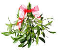 Hanging Green Mistletoe With A Red Bow Royalty Free Stock Photos - 18394548