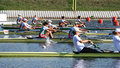 The Finals In Rowing Royalty Free Stock Image - 18395616