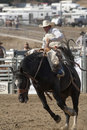 San Dimas Rodeo Saddle Bronc Stock Image - 18411131