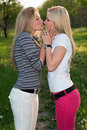 Portrait Of Two Playful Kissing Blonde Royalty Free Stock Photo - 18449565