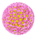 Flower Ball Royalty Free Stock Photography - 18477957