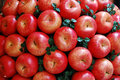 Red Apples Stock Images - 18509954
