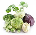 Collection Of Different Varieties Of Cabbage Royalty Free Stock Photo - 18548225