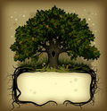Oak Tree Wih A Banner Royalty Free Stock Images - 18565949