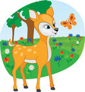 Young Deer With A Butterfly Royalty Free Stock Photo - 18623085