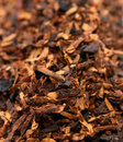 Dry Tobacco Close-up Stock Photo - 18662810