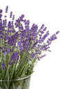 Plucked Lavender In Glass Vase Royalty Free Stock Photos - 18668658