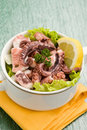 Octopus Salad Stock Photo - 18681140