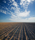 Black Ploughed Field Stock Images - 18754474
