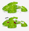 Curly Parsley Character Stock Images - 18797854