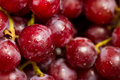 Red Grapes Stock Images - 18810584