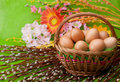 Easter Eggs Royalty Free Stock Photos - 18870288