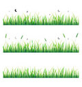 Vector Grass With Butterfly Stock Image - 18929091