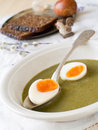 Spinach Soup Royalty Free Stock Images - 18956239