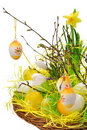 Easter Decorations Stock Photos - 18999273