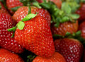 Strawberry Royalty Free Stock Images - 19017189