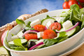 Greek Salad Royalty Free Stock Photo - 19051525