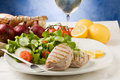 Grilled Tuna Steak With Salad Stock Image - 19051701