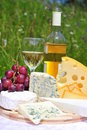 Noble Cheese And White Wine Royalty Free Stock Image - 19066466