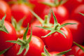 Group Of Red Cherry Tomato Royalty Free Stock Image - 19078886