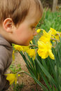 Child Smelling Flowers Royalty Free Stock Photography - 19095497