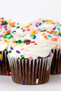 Cup Cakes Royalty Free Stock Photo - 1913995
