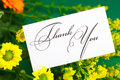 Yellow Daisy,gerbera And Card Signed Thank You Stock Image - 19106221