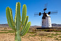 Traditional Windmill At The Fuertaventura Royalty Free Stock Images - 19135589