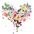 Butterfly Heart Royalty Free Stock Photo - 19166725