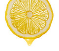 Section Lemon With Drop Stock Photos - 19219263