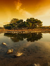 Golden Sunset Royalty Free Stock Photography - 19237207
