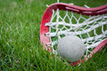 Girls Lacrosse Head And Grey Ball On Grass Stock Photography - 19245502
